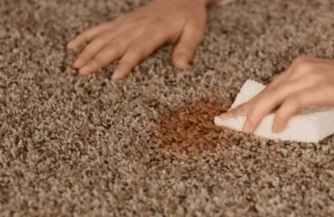 Myer Carpet Cleaning - carpet stains