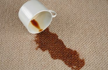 Myer Carpet Cleaning - carpet stains cleaning