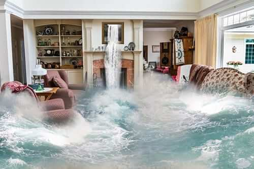 Water Damage Carpet Cleaning Australia. Providing Professional, Quality, Efficient Water Damage Carpet Cleaning Services