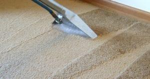 Carpet Water Stains. Professional Rug Cleaning. Servicing Melbourne, Sydney, Brisbane, Perth Australia