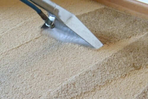 Steam Cleaning Carpets Professionally - Expert Steam Cleaning Services for Melbourne, Sydney, Brisbane, Perth Australia