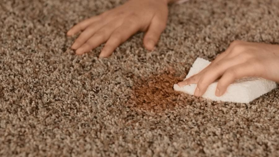 Removing Brown Carpet Stains